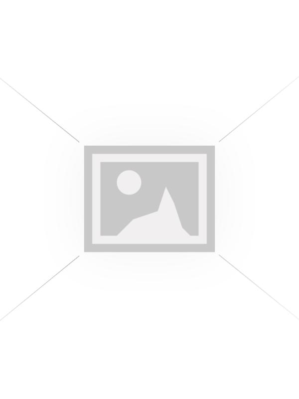 Cartonase pentru cadourile de Craciun ( Christmas tag)